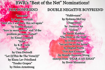 Black Warrior Review best of the net nomination list