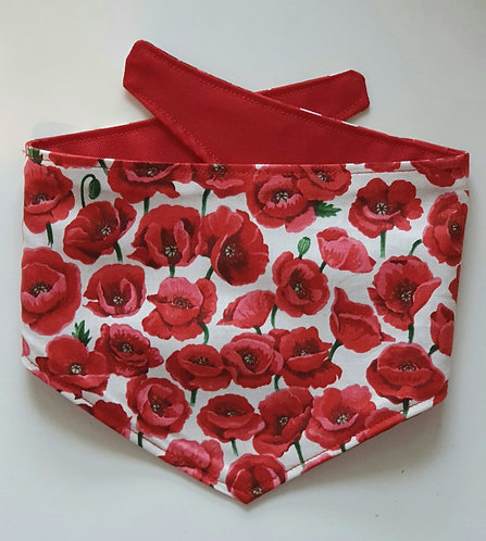 Poppy  POPPER DOG BANDANA 30% goes to ROYAL BRITISH LEGION-NO DISCOUNT CODES