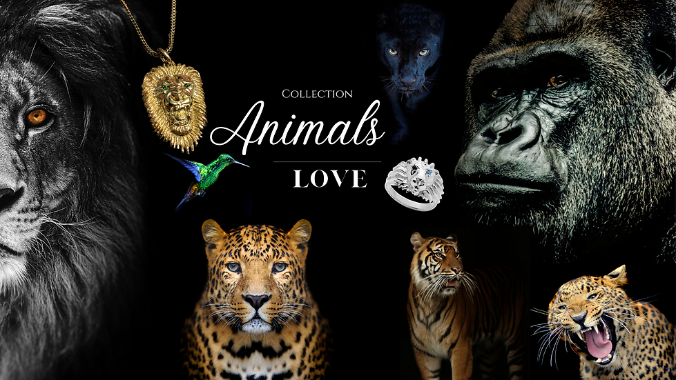 Animals-2.png