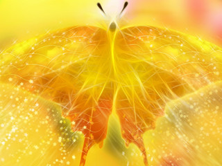 Co-Creating The Healing Vortex - Sunday, Nov. 4th at the Divine Paradigm Center