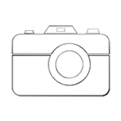 vector graphic of a camera