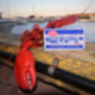 Lobster 3.jpeg