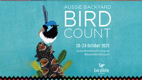 Aussie Backyard Bird Count
