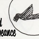 Bird Vengeance Storyboard Animation.mp4