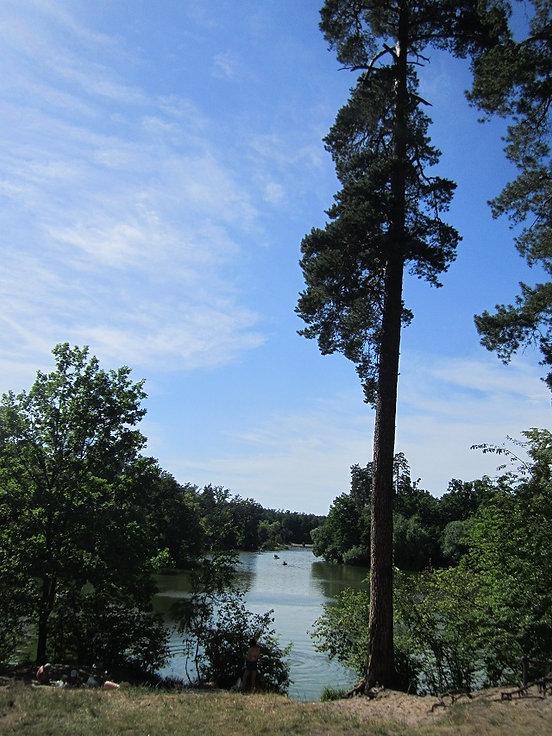 Озера в Пуще Водице