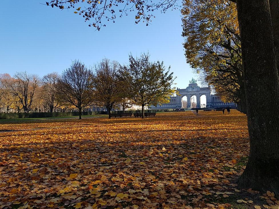Парк Пятидесятилетия, Брюссель