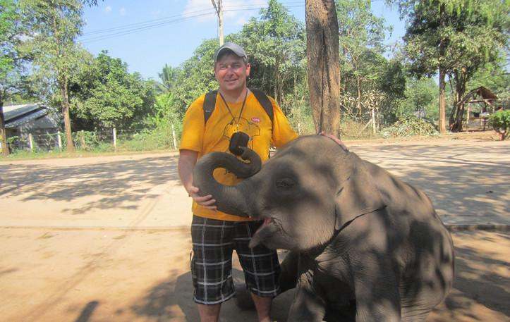 Каждый слоненок мечтает о ласке