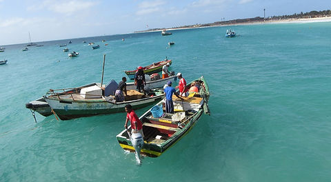 Рыбаки прибывают на пирс города Санта Мария