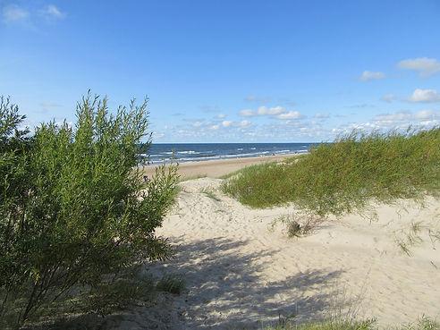 Вид с дюны на море