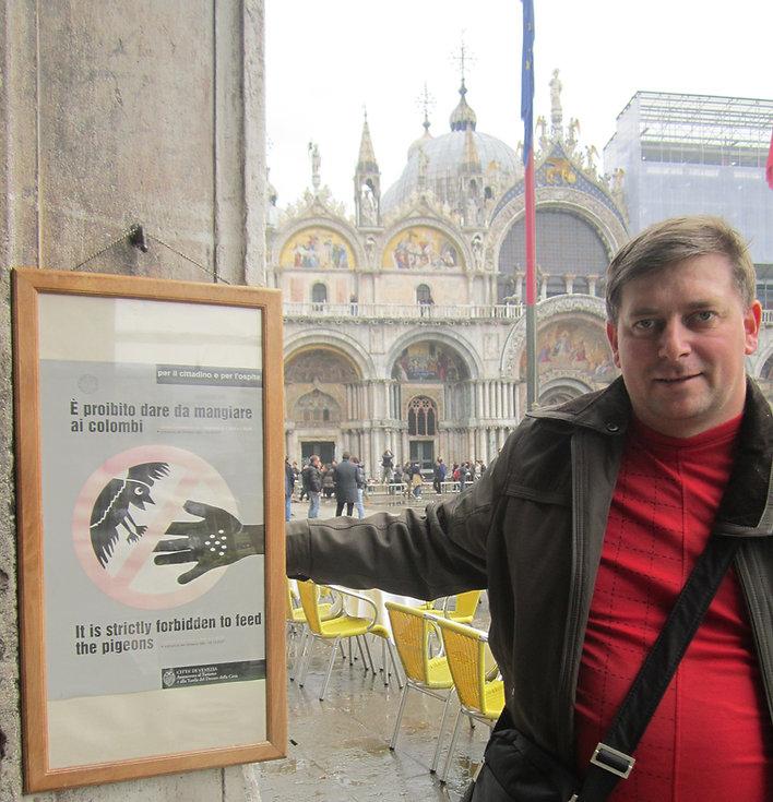 Опасные птицы живут в Венеции