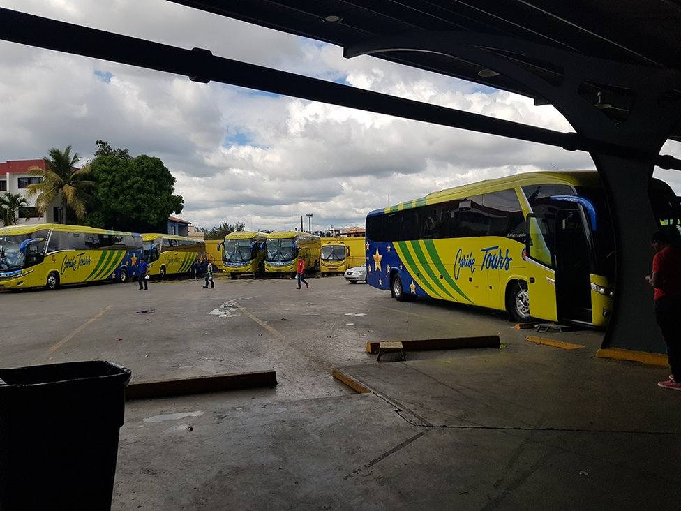Автобусы Caribe tours