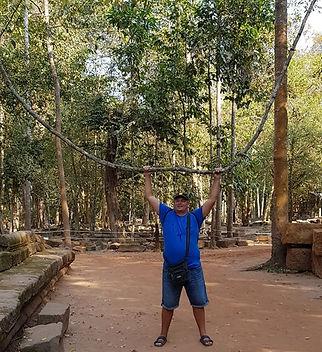 Лианы в джунглях