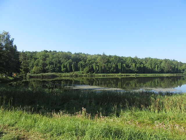 Озеро возле палаточного городка