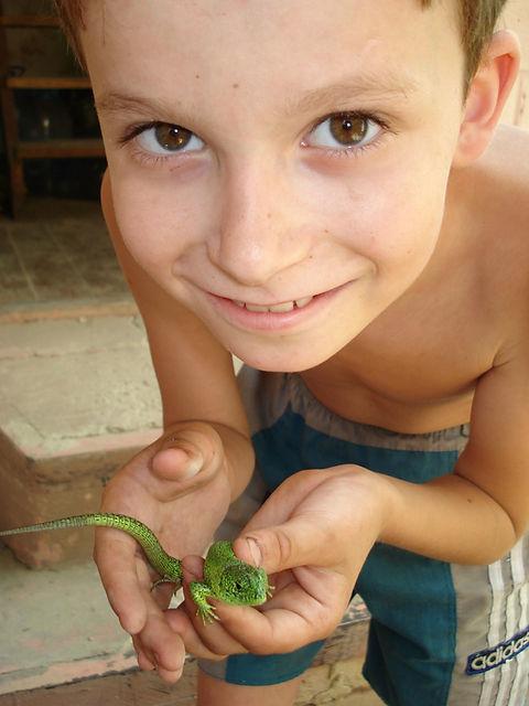 Макс поймал ящерицу