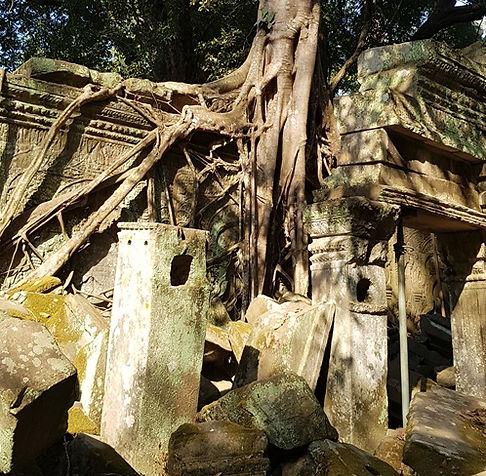 Корни деревьев разрушают храм