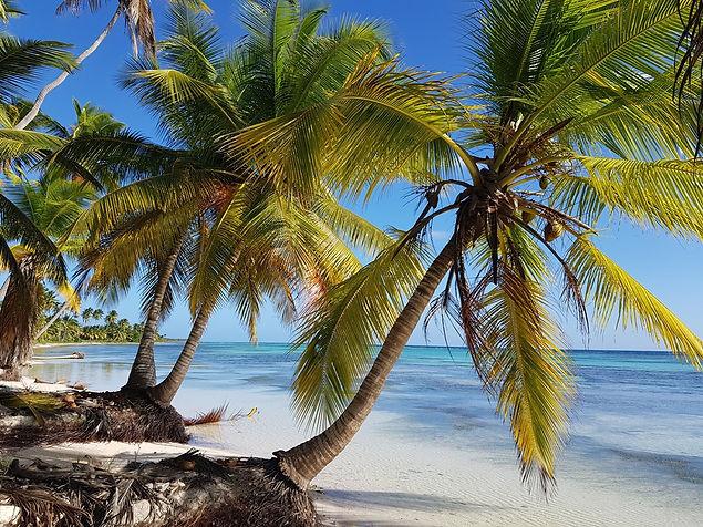 Пляж на острове Саона в Доминиканской республике