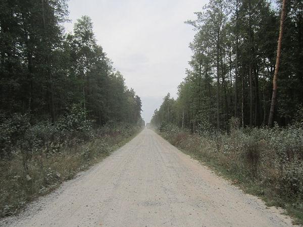 Дорога к селу Городское