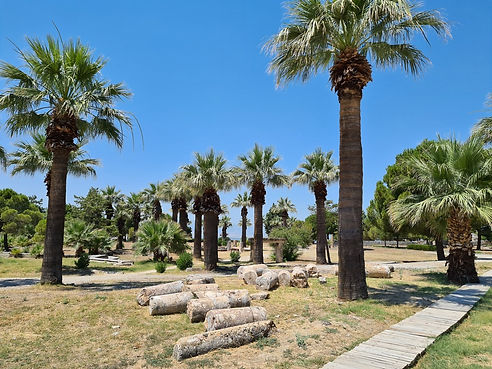 Пальмы на улицах Иераполиса