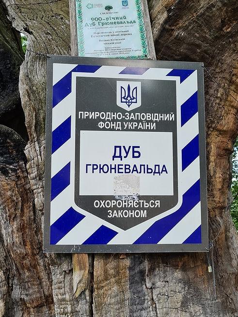"""Официальная табличка """"Дуба Грюневальда"""""""