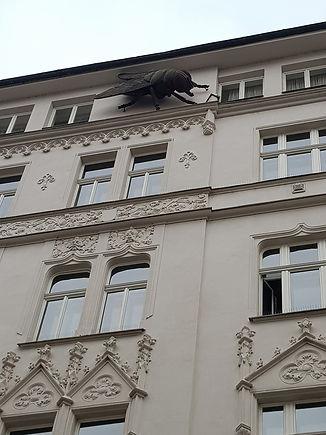 Дом с мухой, Прага