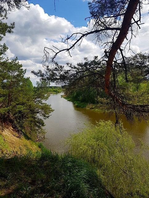 Излучина реки Тетерев
