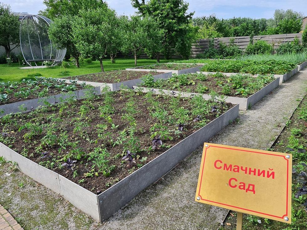 Вкусный сад в парке Камелия