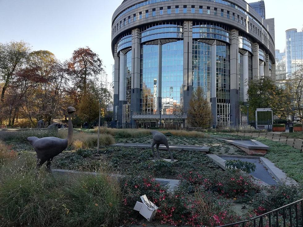 Дворик со страусами в Европарламенте