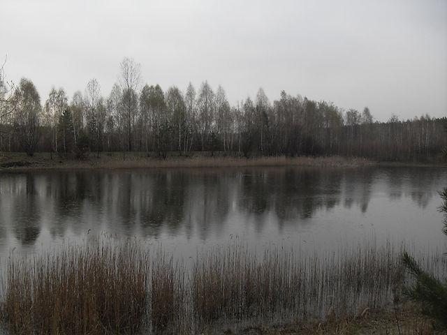 Усадьба Полесье, Украина