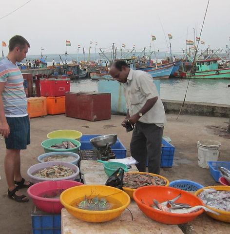 Рыбный рынок в Чапоре, Гоа, Индия
