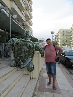Когда черепаха больше, чем ты