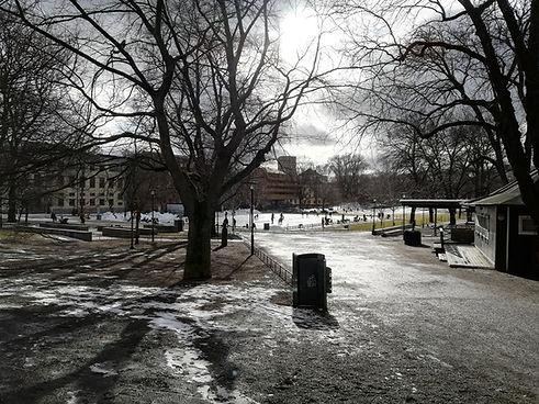 Парк Ваза в Стокгольме
