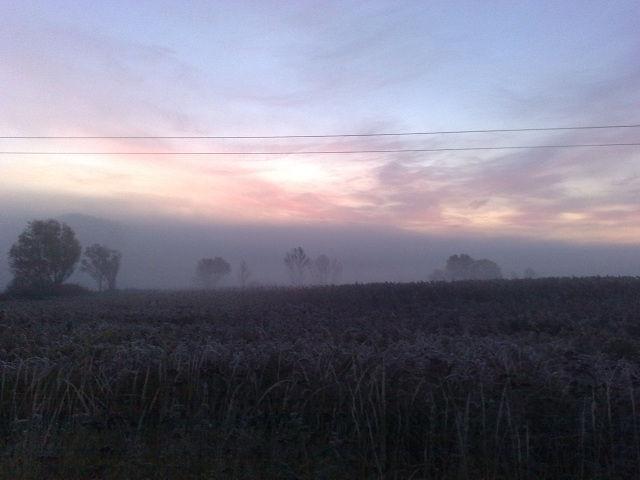 Раннее утро в селе Песчаное