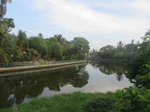 Набережная реки в Тангалле