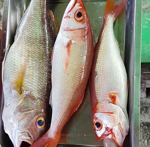 Рыба, которую продают на пляже