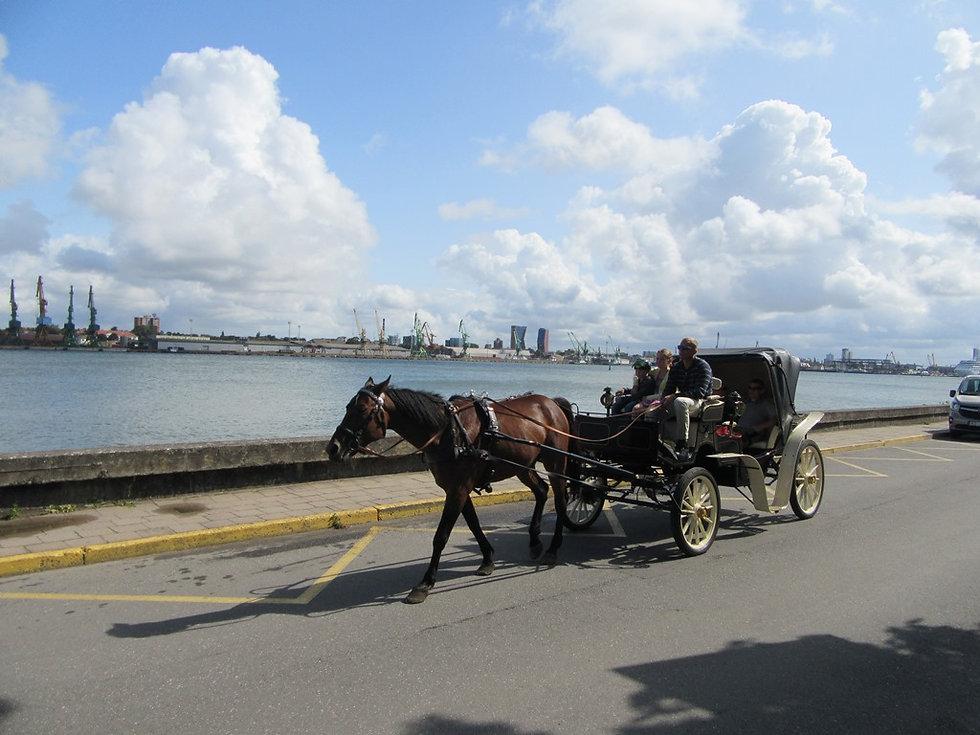 Катание на лошадях на острове Юодкранте