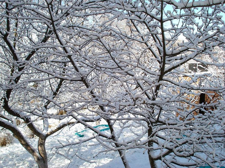 Снег в апреле на даче в селе Песчаное