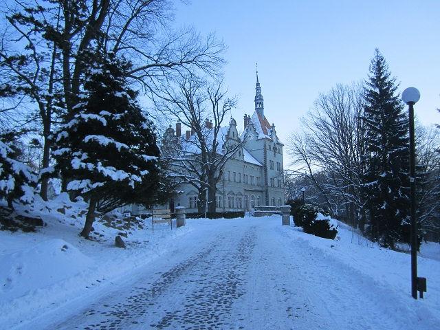 Замок Шенборн, Украина