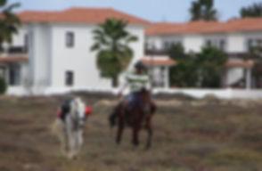 Ковбой в городе Санта Мария
