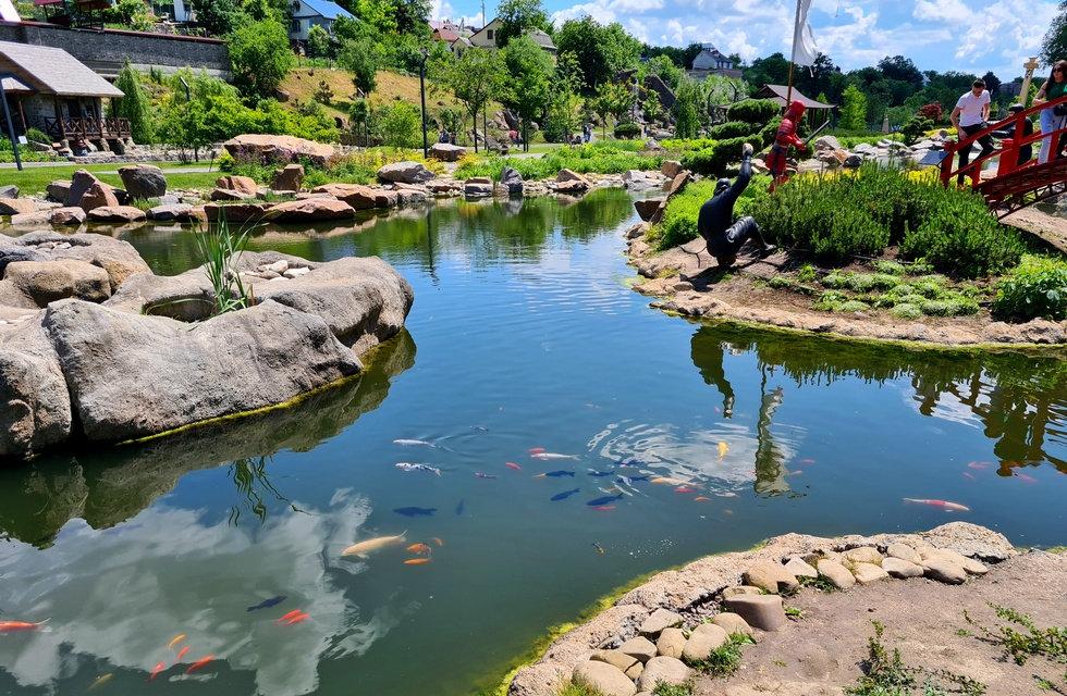 Цветные рыбки в парке Новая София