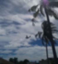 Аэротакси летит в Мале