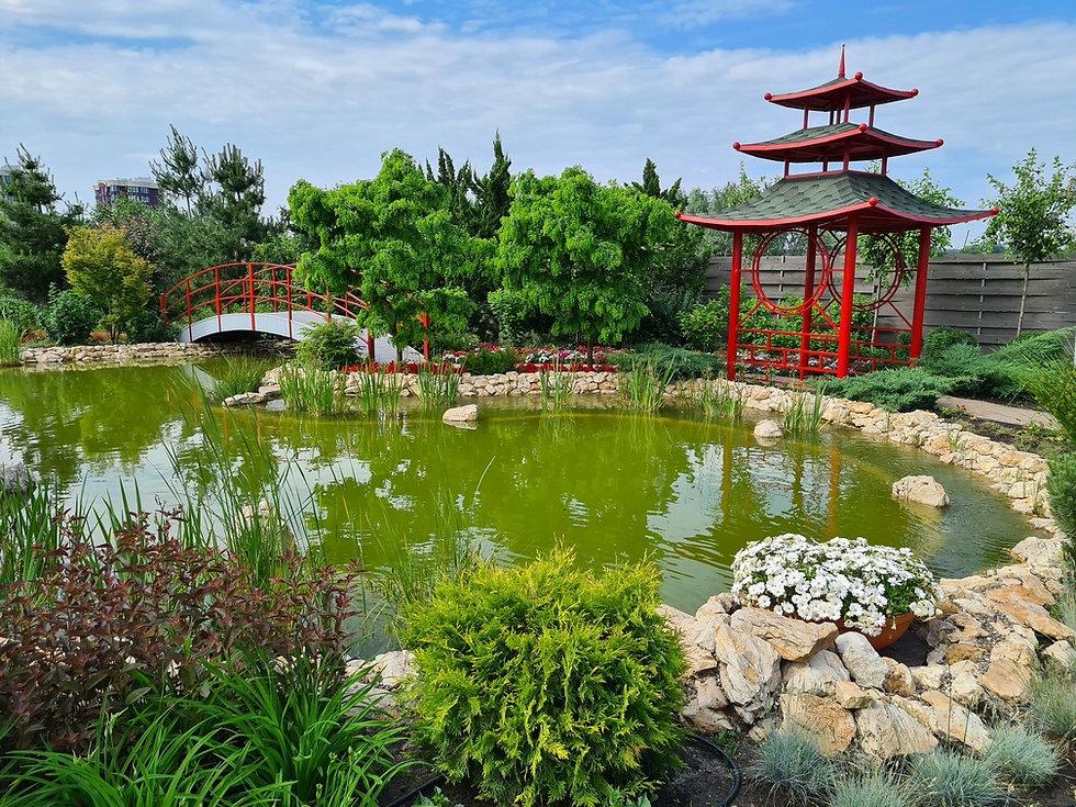 Японский сад в парке Камелия