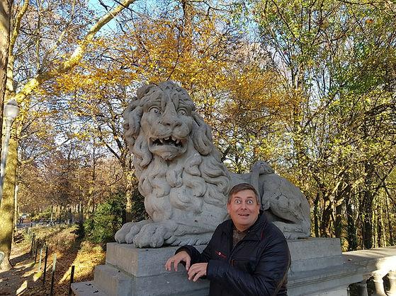 Львы из парка Брюссель