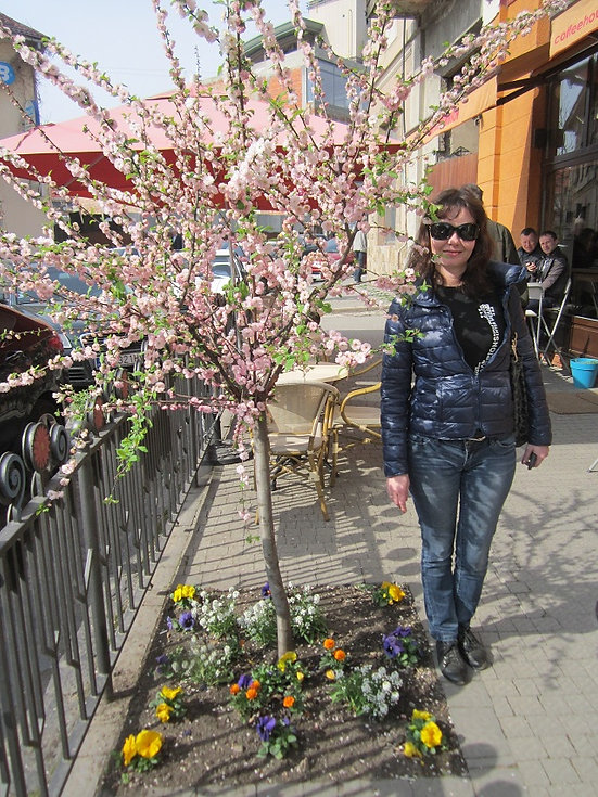 Ужгород, город цветущих сакур