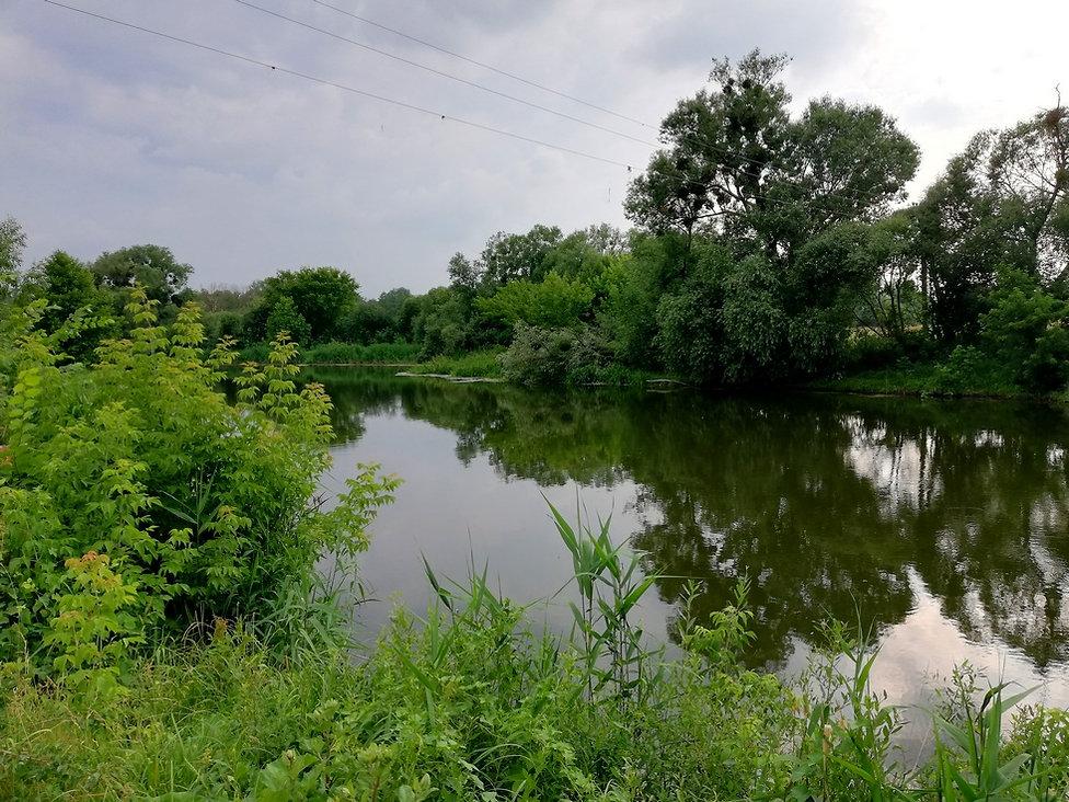 Река Рось возле Лесной сказки