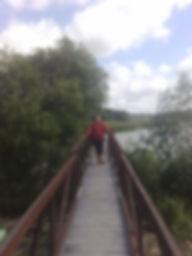 Хаенки, Зеленая светлица, мост