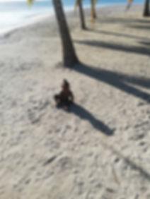 Малыш на пляже острова Саона