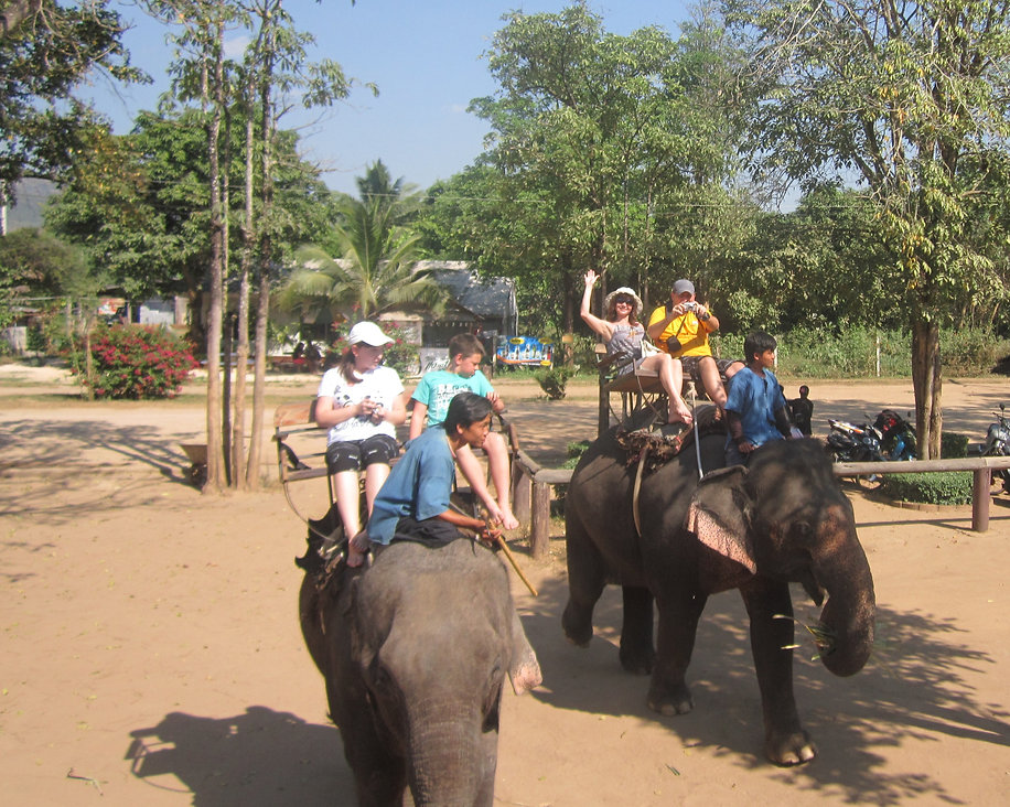 Вальяжно путешествуем сидя на слоне