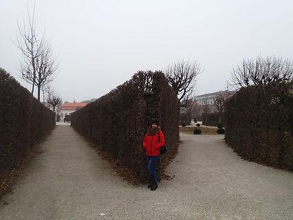 Высокие кусты дворца Бельведер