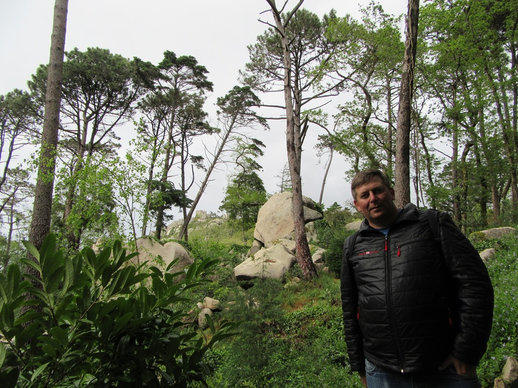 Валуны и деревья