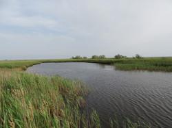 Озеро, посреди острова